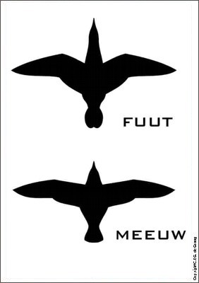 vogels01