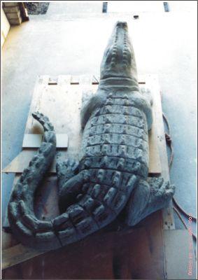 krokodil5s