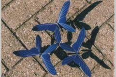 vlinder04