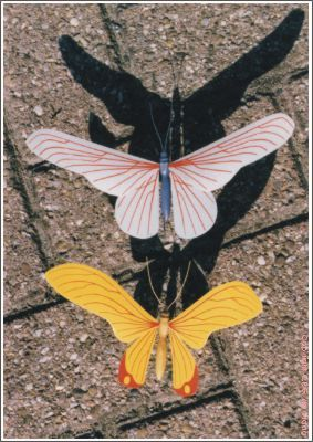 vlinder02s