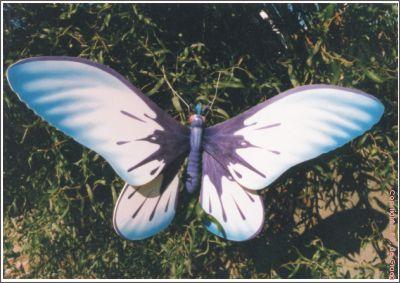 vlinder09